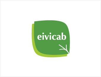 eivicab logo colour